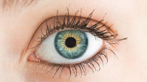 Doenças na retina: saiba quais são as 3 mais comuns