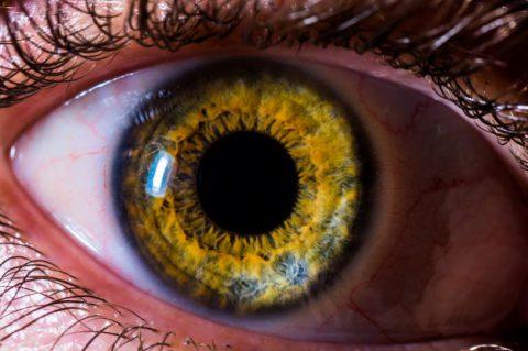 Visão monocular: conheça o Problema que afeta um dos olhos